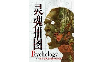 《Psychology 灵魂拼图》(校对版全本)作者:伯百川 百度云txt全集下载