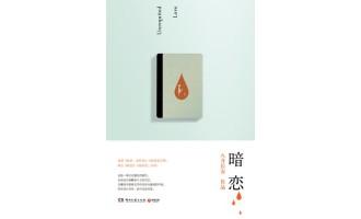 《暗恋》(实体版全本)作者:八月长安 百度云txt全集下载