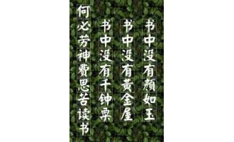 《乜视三国》(校对全本)作者:六只手 百度云txt全集下载
