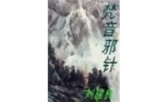 《梵音邪针》(校对版全本)作者:刘建良 百度云txt全集下载