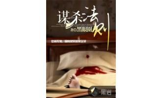 《谋杀法则》(校对版全本)作者:黑眼圈 百度云txt全集下载