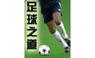 《足球之道》(校对版全本)作者:不如踢球 百度云txt全集下载