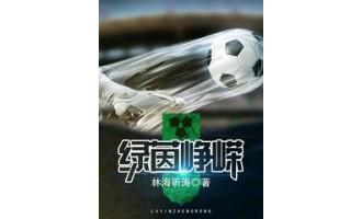 《绿茵峥嵘》(校对版全本)作者:林海听涛 txt全集下载